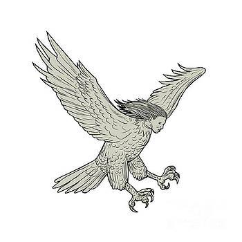 Harpy Swooping Drawing  by Aloysius Patrimonio