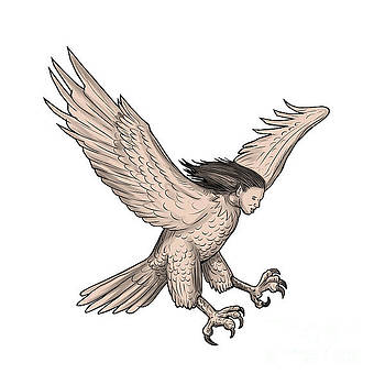 Harpy Swooping Tattoo by Aloysius Patrimonio