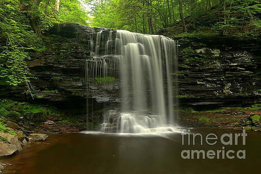 Adam Jewell - Harrison Wrights Forest Falls