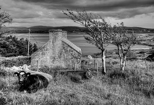Harsh life in Donegal by David McFarland