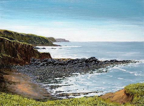 Hartland Coastline by Mark Woollacott