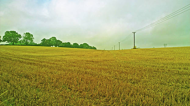 Harvest In by Anne Kotan
