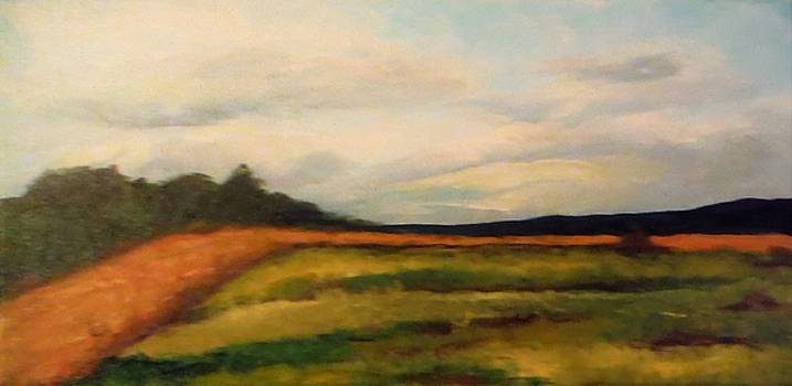 Harvest by Jacqueline Whitcomb