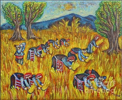 Harvest by Milen Litchkov