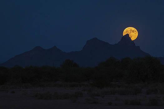 Rosemary Woods-Desert Rose Images - Harvest Moon Over Picacho Peak-IMG__9191-2016