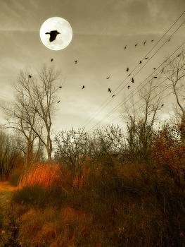 Harvest Moon Rising by Gothicrow Images