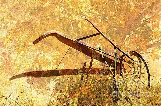 Harvest Plow by Barbara Milton