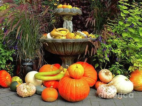 Harvest Splendor by Heike Ward