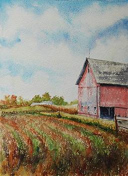 Harvest Time by Mike Yazel