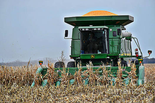 Harvesting Corn-II by Kathy M Krause