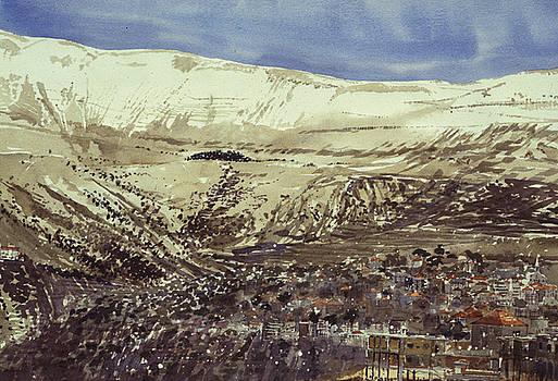 Hasroun and Cedars of Lebanon by Martin Giesen