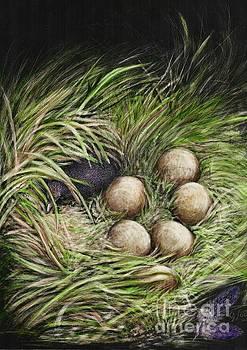 Hatching's Purple Hen  by Jan Lowe