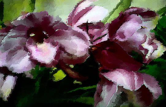Hattie's Orchids by Kathleen Storey