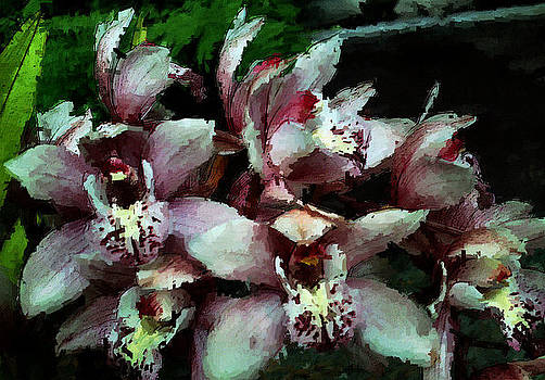 Hatties Orchids Too by Kathleen Storey