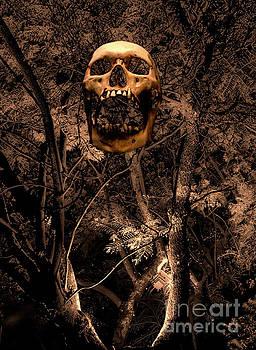 Haunted Forest II by Al Bourassa