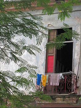Havana Cuba window by Simi Berman