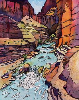 Havasu Creek by Stacy Egan