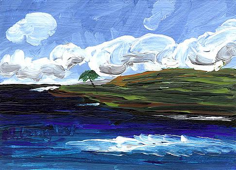 Hawaii 18 by Helena M Langley
