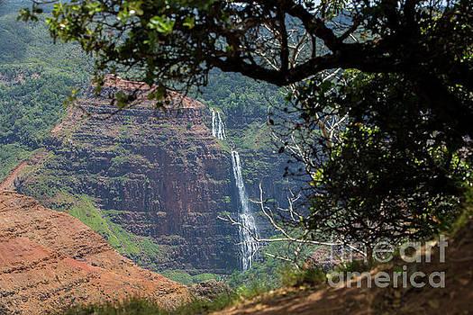 Hawaii 4 by Daniel Knighton