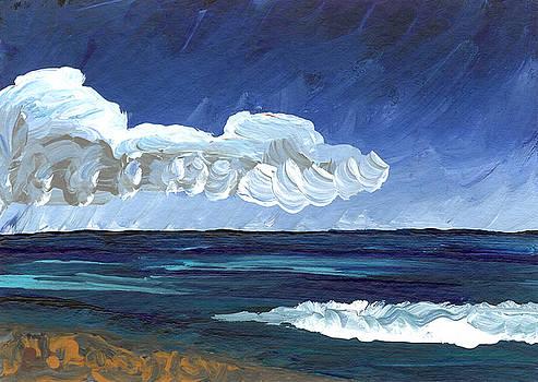 Hawaii 5 by Helena M Langley