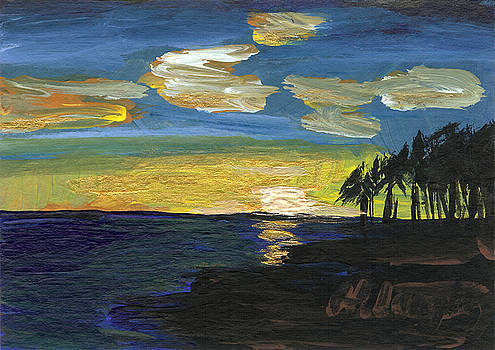 Hawaii 8  by Helena M Langley