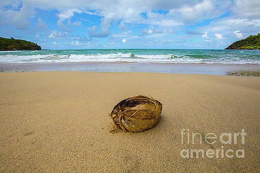 Hawaii 9 by Daniel Knighton
