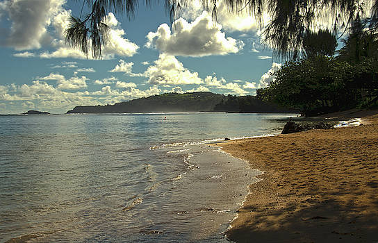 Hawaii Beachtime by Joie Cameron-Brown