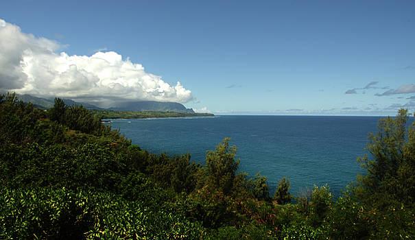Hawaii coastline by Joie Cameron-Brown