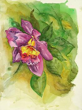 Hawaii Flower by E E Scanlon