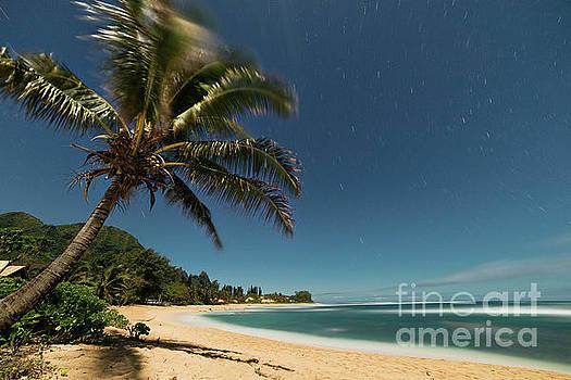 Hawaii Moonlit Beach Wainiha Kauai Hawaii by Dustin K Ryan