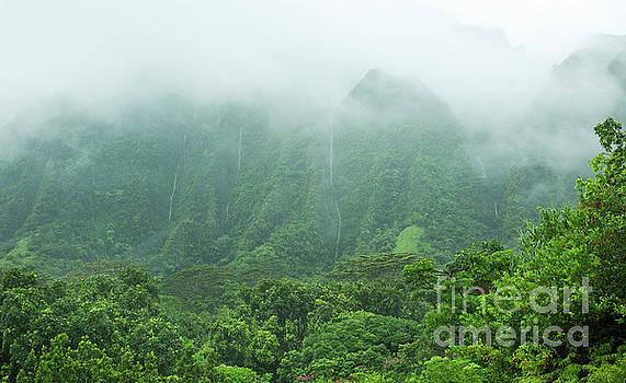 Charmian Vistaunet - Hawaii Mountain Waterfalls