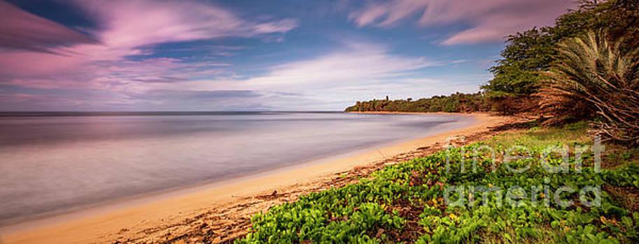 Hawaii Pakala Beach Kauai by Dustin K Ryan