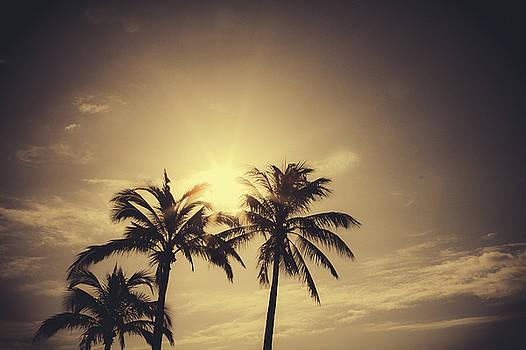 MARVIN JIMENEZ - Hawaii Palms