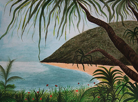 Hawaii Series by Amy Parker