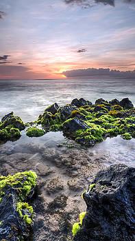 Hawaii Tide Pool Sunset by Dustin K Ryan