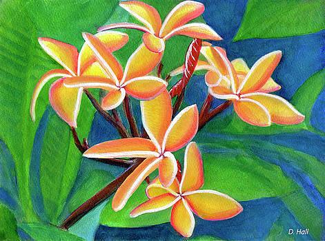 Hawaii Tropical Plumeria Flowers #232 by Donald k Hall