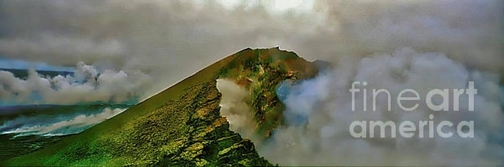 Hawaii Volcanoes National Park aerial by Tom Jelen