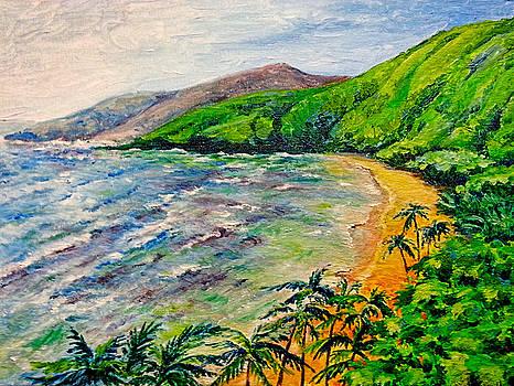 Hawaiian Beach by Svetlana Nassyrov