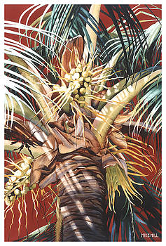 Hawaiian Fireworks by Mike Hill