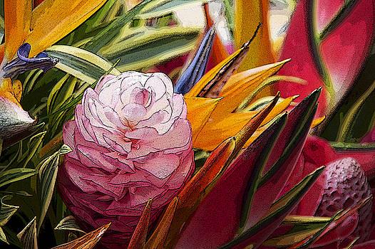 Hawaiian Glory  by Carolyn Marchetti
