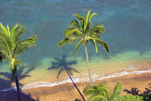 Hawaiian  by Kathy Bassett