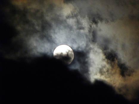 Elizabeth Hoskinson - Hawaiian Moon