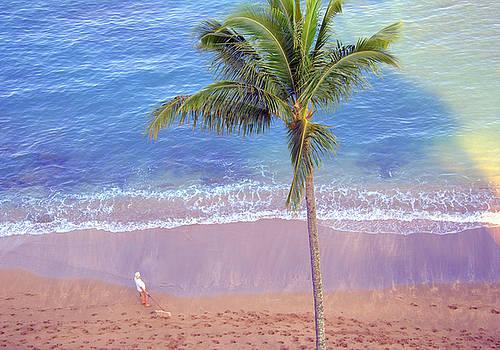 Hawaiian Morning by Kathy Bassett
