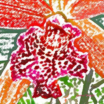 James Temple - Hawaiian Orchid