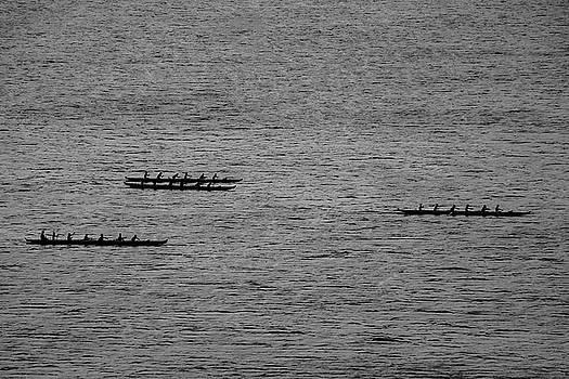 Hawaiian Rowers by Dave Matchett