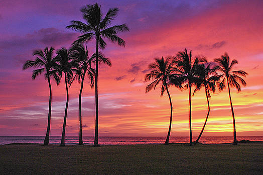 Hawaiian Sky by Megan Martens