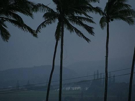 Hawaiian Storms by Sonya Wilson