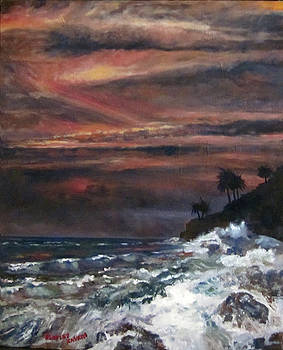 Bradley Kaskin - Hawaiian Sunset