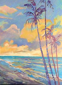 Hawaiian Sunset  by Diane Renchler