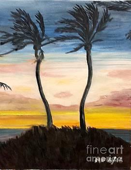 Hawaiian Sunset by Madeleine Prochazka